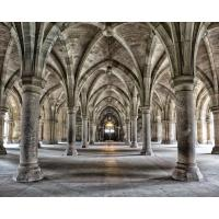 Gothic Arches Wall Mural-WR50556 - The Home Depot
