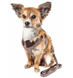 pet life luxe houndsome medium2 in 1 reversible adjustable dog harness leash [ 1000 x 1000 Pixel ]