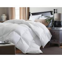 Blue Ridge White Goose Down and Feather Twin Comforter ...