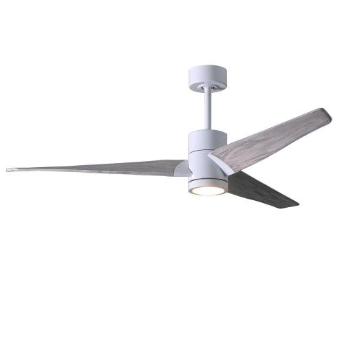 small resolution of led indoor outdoor damp gloss white ceiling fan