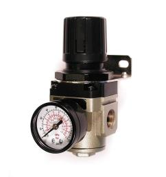 3 8 in npt intermediate air regulator with steel protected gauge [ 1000 x 1000 Pixel ]