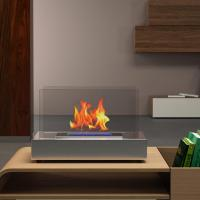 Moda Flame Vigo 14 in. Vent-Free Ethanol Fireplace in ...