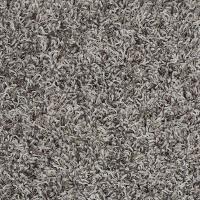 Platinum Plus Carpet Sample - Royal Step - In Color Ash ...