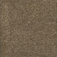 Texture - Carpet - The Home Depot