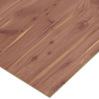 1 Thick Plywood Home Depot
