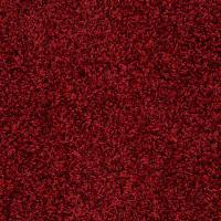 Platinum Plus Carpet Sample - Whimsical - In Color Red ...