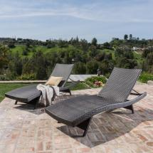 Noble House Toscana Multi-brown 2-piece Wicker Outdoor