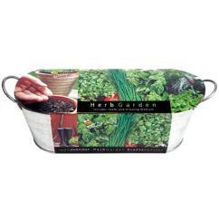 Kitchen Herb Kit Ranges Buzzy Windowsill Grow 94330 The Home Depot