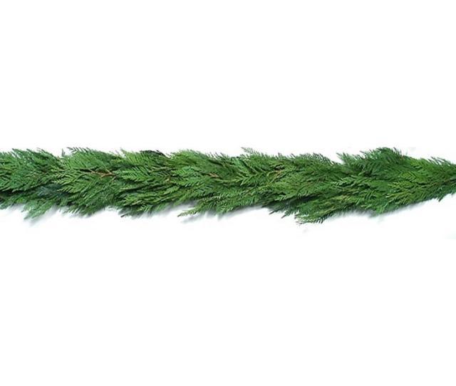 Fresh Evergreen Cedar Christmas Garland Live