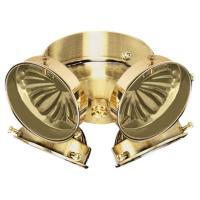 Sea Gull Lighting 4-Light Polished Brass Ceiling Fan Light ...