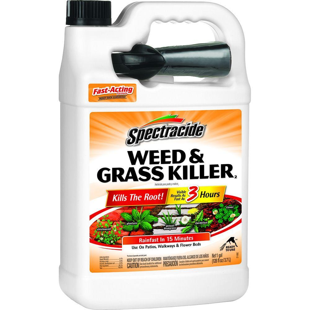 Spectracide Weed And Grass Killer 128 Oz Readytouse