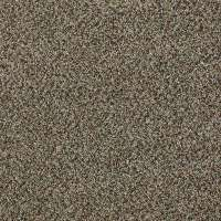 LifeProof - Carpet Samples - Carpet & Carpet Tile - The ...