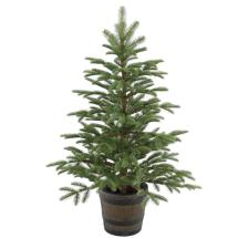 National Tree Company 4 Ft. Norwegian Spruce Entrance