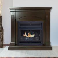 42 Ventless Fireplace Home Depot | Insured By Ross