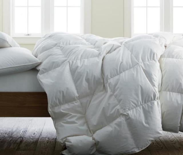 The Company Store Organic Cotton Extra Warmth White Twin Down Comforter