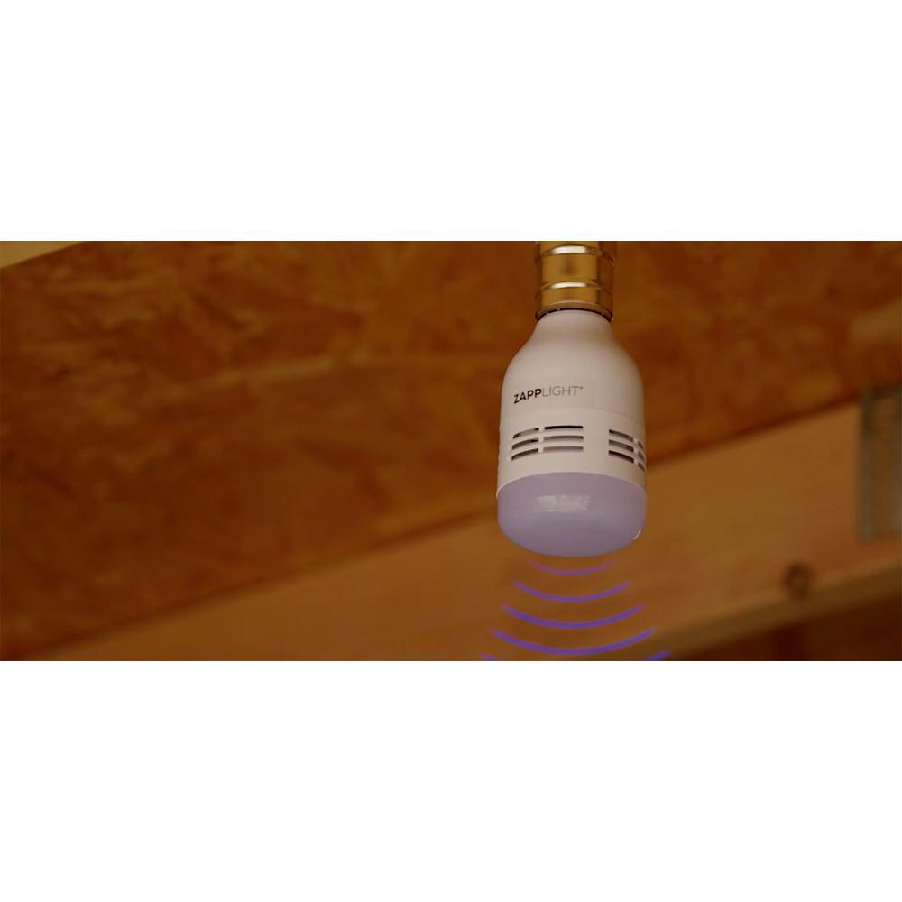 Zapp Light Bulb