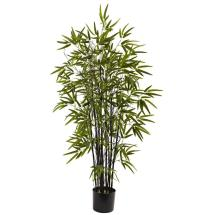 Natural 4 Ft. Black Bamboo Tree-5417 - Home Depot