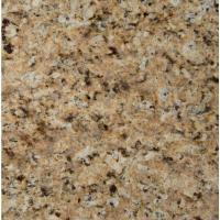 MSI St. Helena Gold 12 in. x 12 in. Polished Granite Floor ...