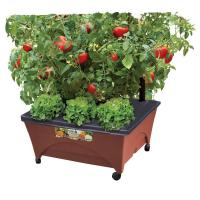 CITY PICKERS 24.5 in. x 20.5 in. Patio Raised Garden Bed ...