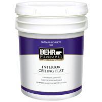 Behr Premium Plus 2 Gallon Flat Interior Ceiling Paint ...