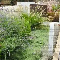 Giardino Mediterraneo Paesaggio Idee e Foto l homify