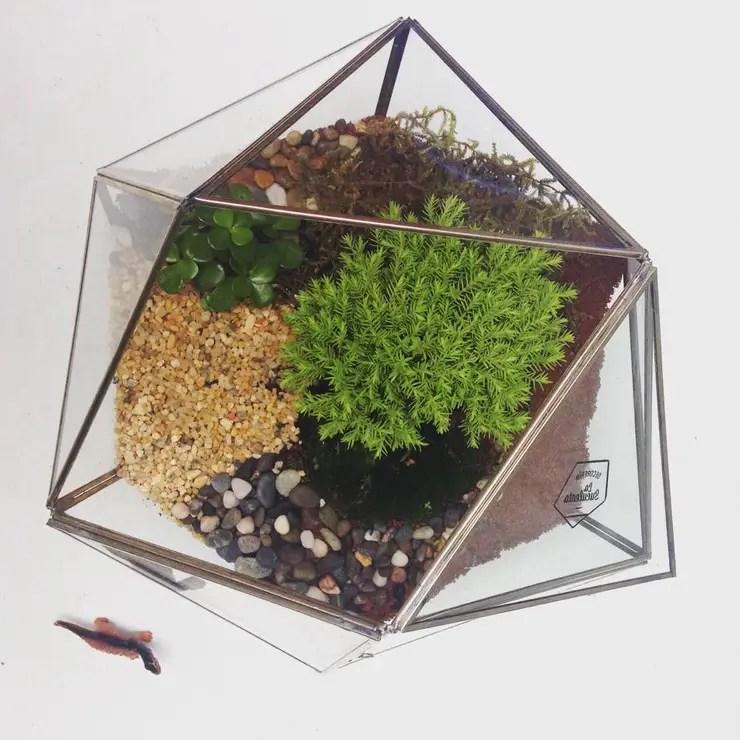 Haz Un Mini Jardín Al Estilo Zen ¡para Tu Cuarto