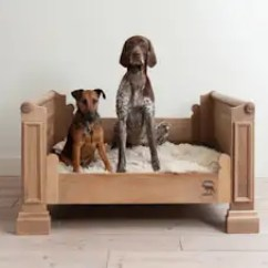 What Can I Use To Clean My Suede Sofa Rattan Set Singapore Love Animals? Bring The Spirit Your Home!