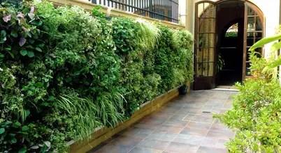 Jardín Vertical Para Tu Casa, Fachadas U Oficinas