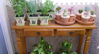 5 Plants That Shouldn't Be Kept Inside Your Home