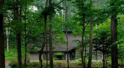神奈川の建築家が手がけた自然と調和する森の別荘