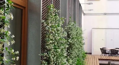 Diseño De Jardines En Barcelona