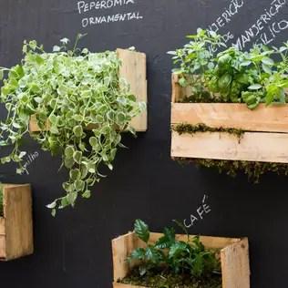 Jardines de estilo rústico por Luiza Soares – Paisagismo