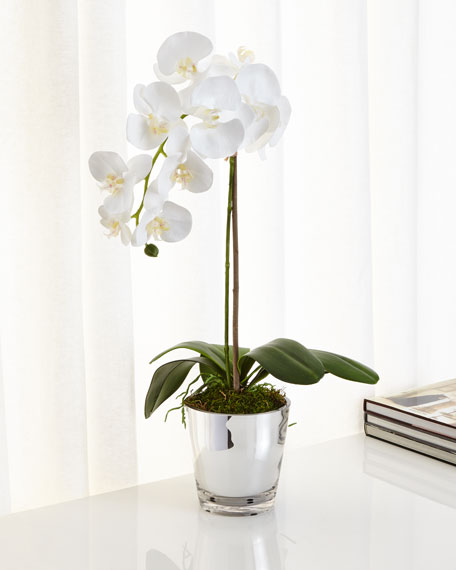 NDI Orchids in Mirrored Glass FauxFloral Arrangement