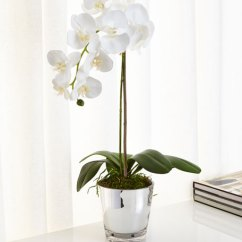 Living Room Ornaments Extension Cord Ndi Orchids In Mirrored Glass Faux-floral Arrangement