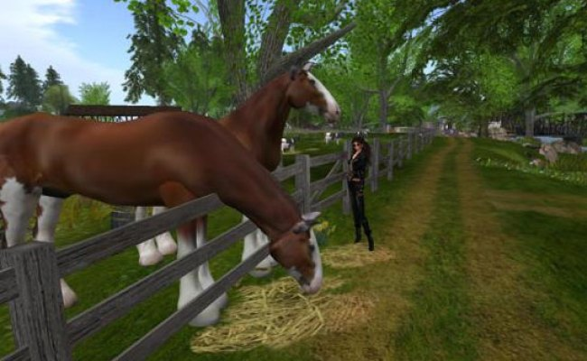 Own A Ranch In Second Life Play Horse Games Free