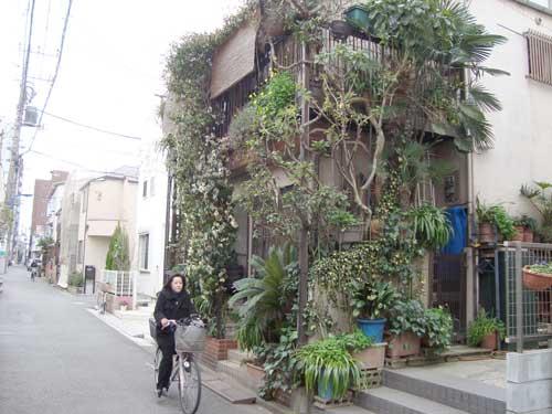 2010-01-12-shin_nakano_forest_hse_t500.jpg