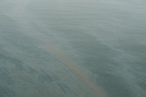 2010-08-04-oil2.jpg