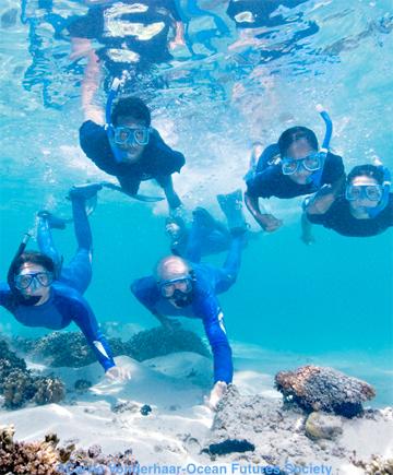 2012-08-27-PlantAFish.png
