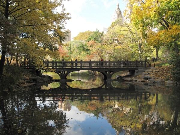 Bank Rock Bridge Central Park