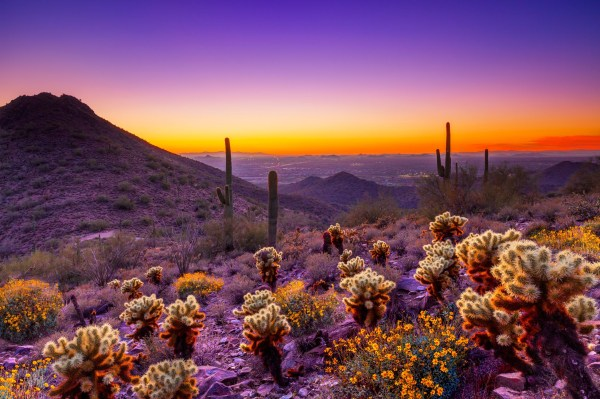spend week in arizona