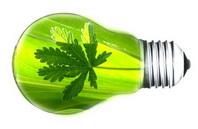 2013-09-11-lightbulbgreenwgreenleaf200wleft.jpg