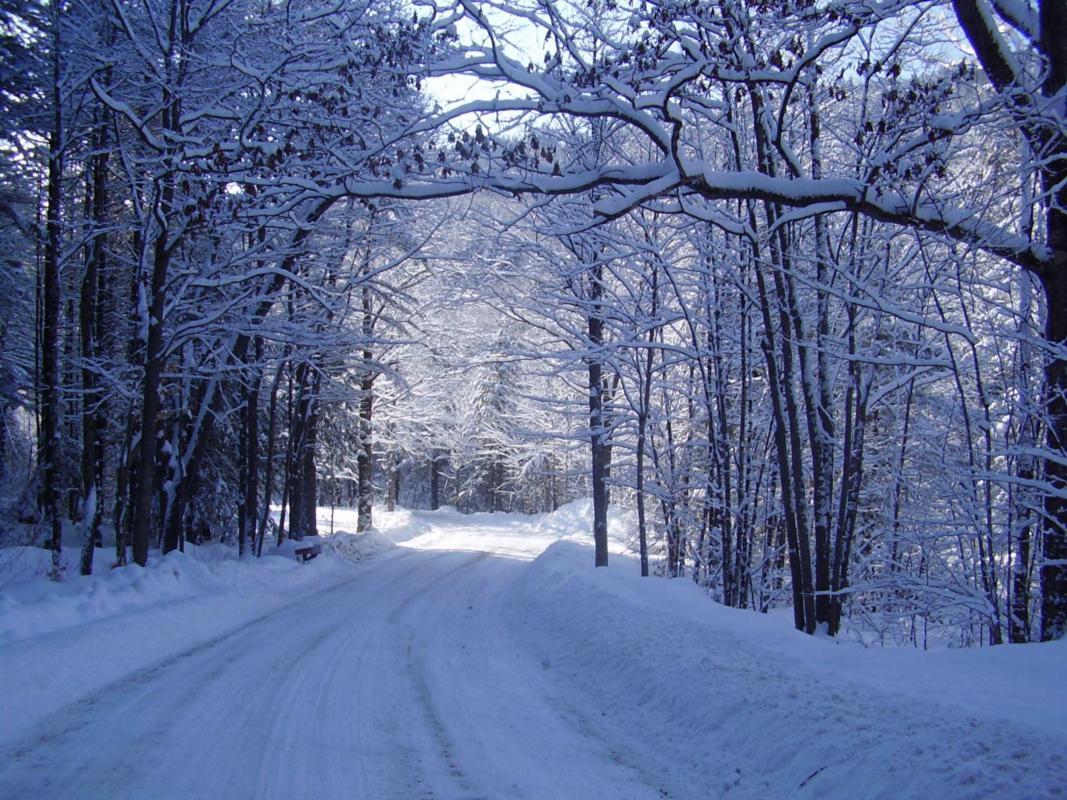 Beautiful Snow Falling Wallpapers 7 Reasons Buffalonians Shouldn T Hate Snow Huffpost