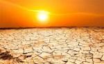 2014-02-28-DroughtSun2EarthDrReeseHalter.jpg