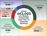 2014-03-12-deaths_piecigarettescdc.jpg