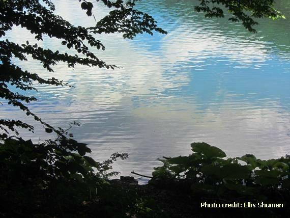 2014-07-28-9biogradska.JPG