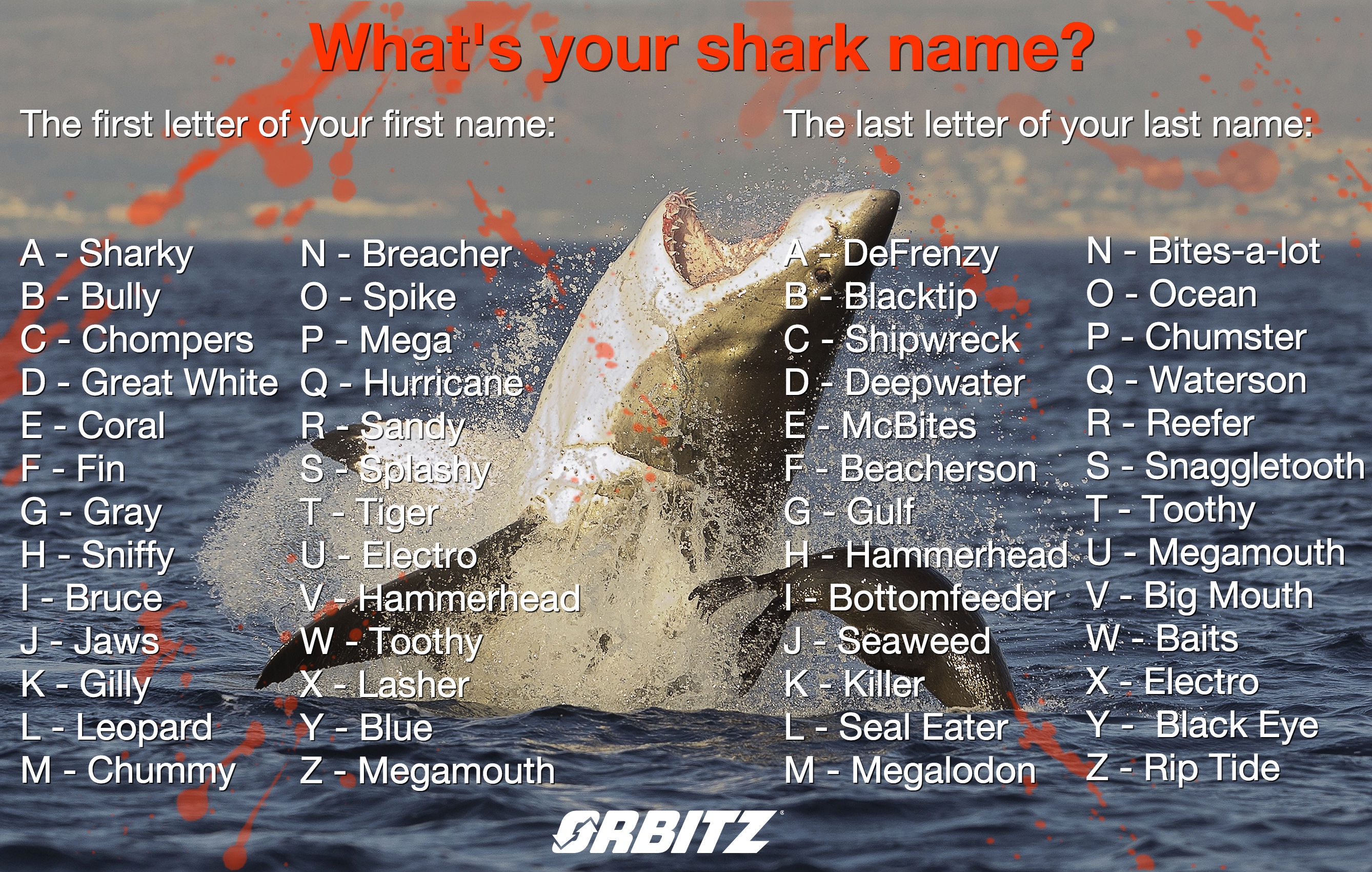 Quiz What S Your Shark Name