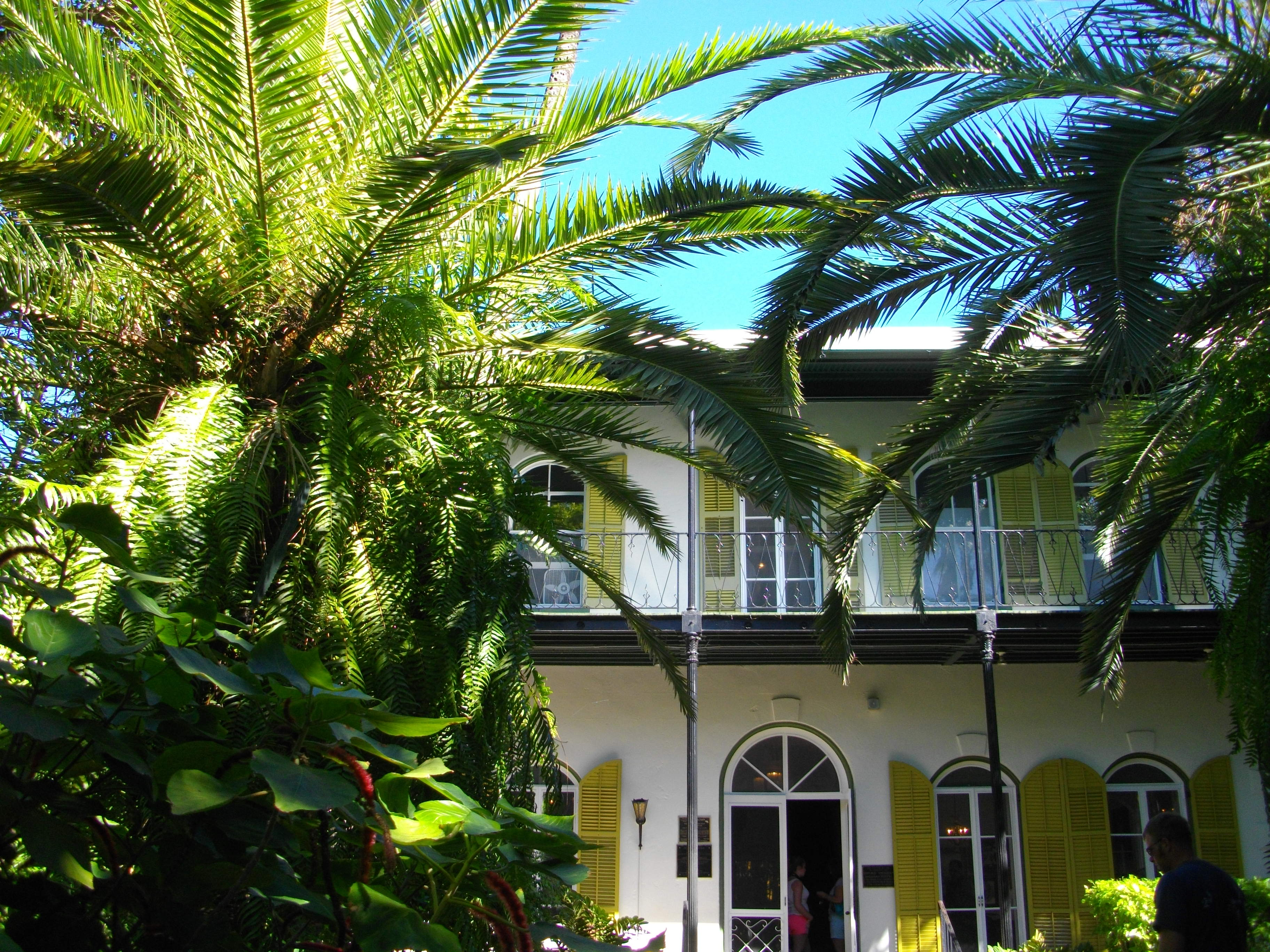 The Hemingway House in Key West  HuffPost