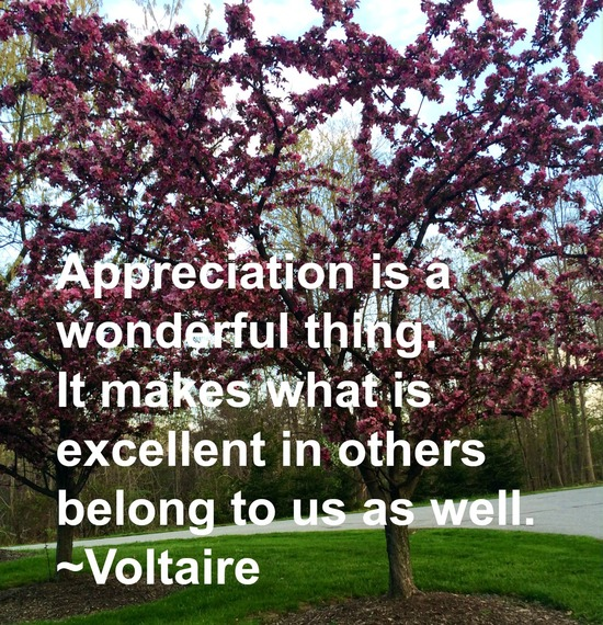 """Appreciation is a wonderful thing. It makes what is excellent in others belong to us as well."" ~ Voltaire #quote http://charityideasblog.com A Dozen #Inspiring Quotes for an Insightful 2015"