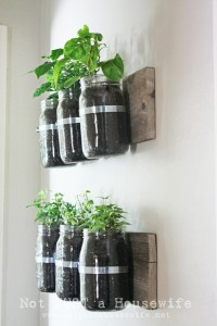 3 DIY Herb Gardens You'll Want to Grow   HuffPost