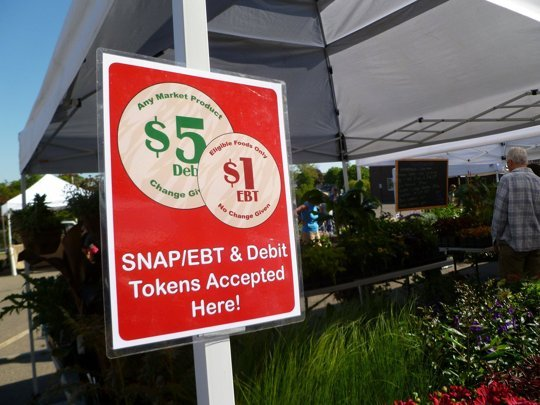 How Apply Food Stamps California